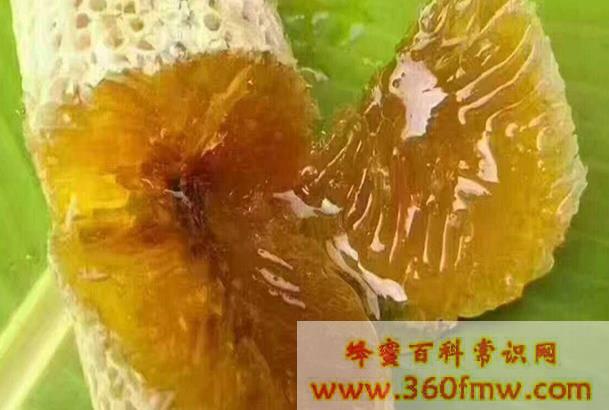 版纳野生蜂蜜:云南西双版纳野生蜂蜜介绍