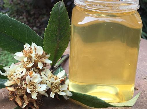 蜂蜜为什么有很强的抗菌消炎作用?