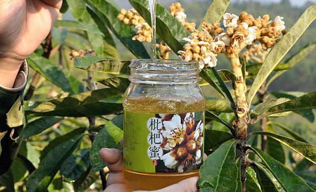 蜂蜜的十一大功效与作用